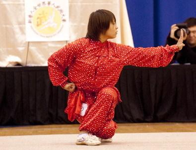 华人武术大赛初赛获好评 高手各展武艺