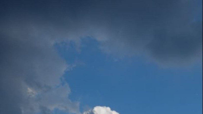 成都天空出現「熊貓雲」網民驚嘆