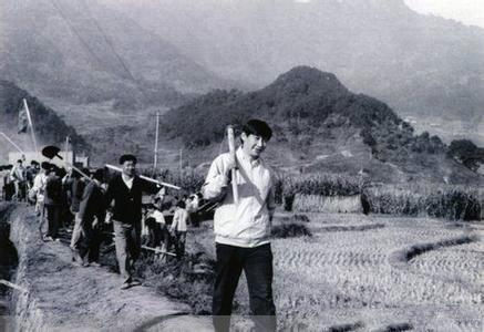 陝西拍馬研究「梁家河大學問」 傳被緊急叫停
