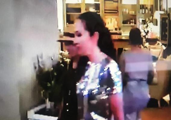 王健最后晚餐监控视频中出现神秘法国女人