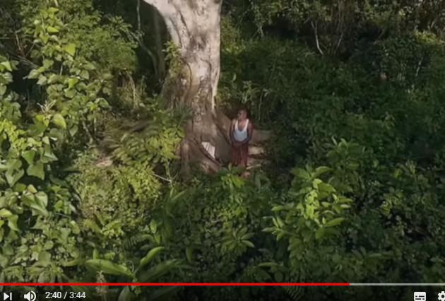 一个人种出的森林 轰动全世界(视频)