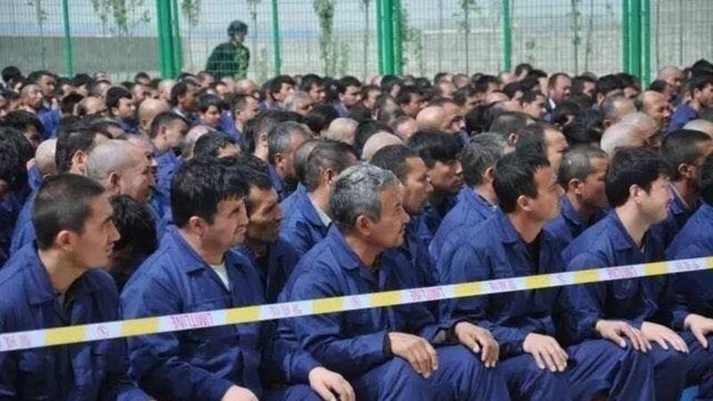 秘密文件外泄 推動新疆教育營關鍵人物曝光