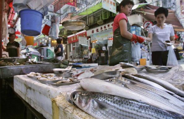 """大陆淡水鱼被检出含致癌""""食物界禁药"""""""