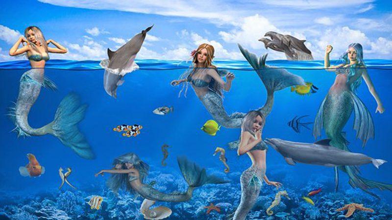 美人魚是真實存在的物種嗎?