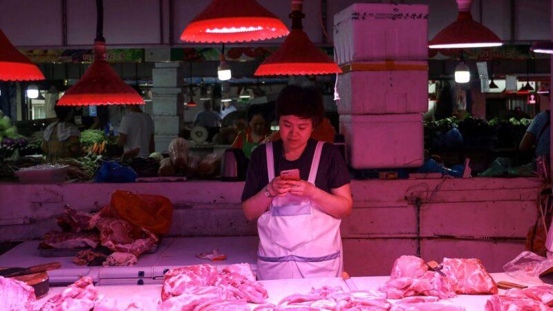十一前投放2万吨肉不够 中国猪价再现上涨潮