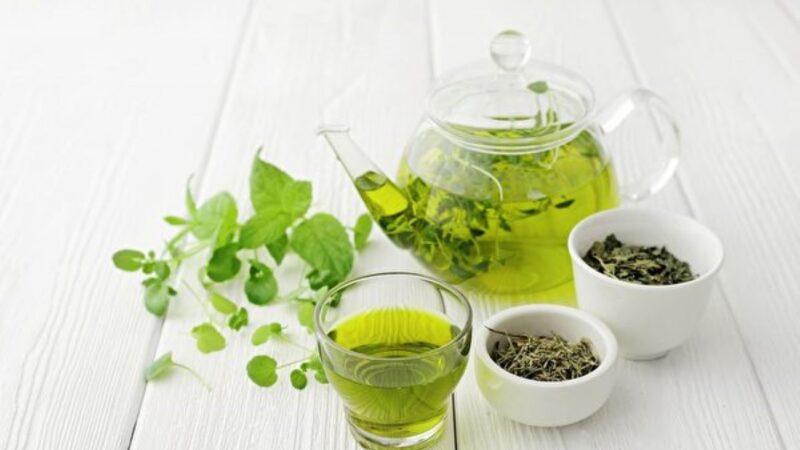 研究:綠茶提取物可抗超級細菌