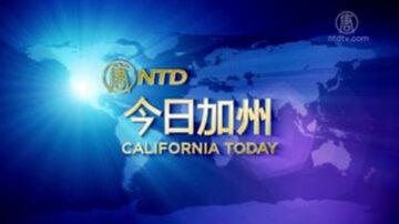 【今日加州】10月14日完整版