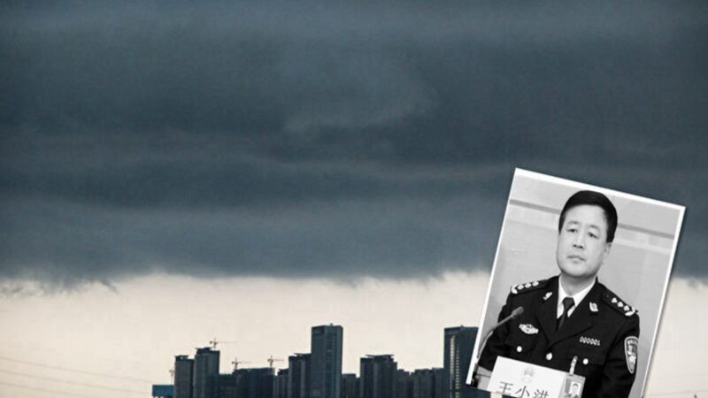 周晓辉:从王小洪新兼职看中南海的两大危机