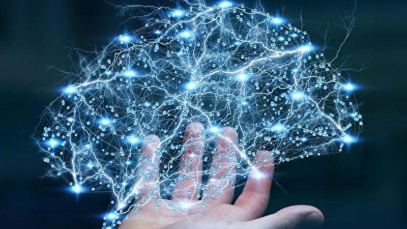 什么是神经网络系统?