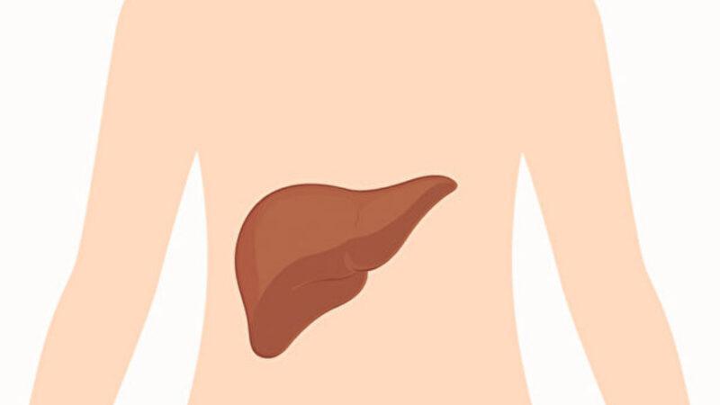 從身體2部位看出肝功能好壞 1招增強肝功能(組圖)