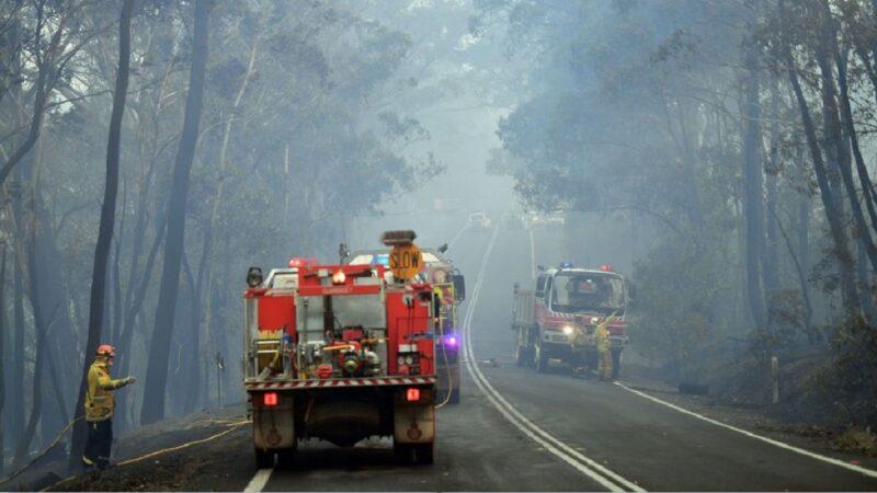 澳洲丛林野火烧不尽 26万人连署取消跨年烟火