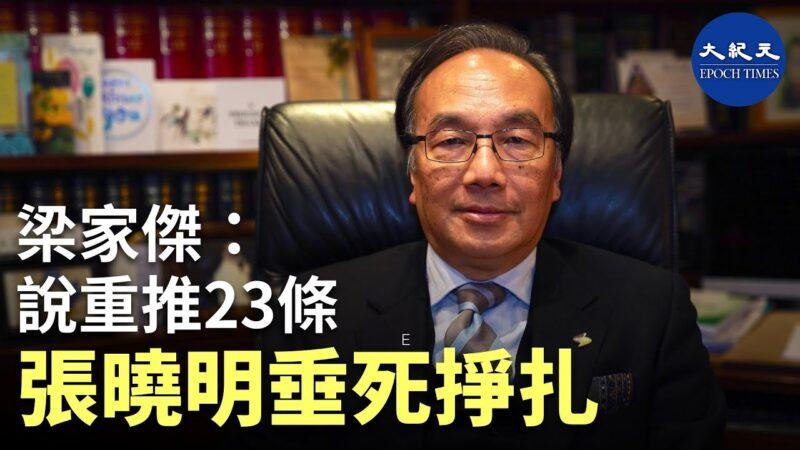 【珍言真语】 梁家杰: 张晓明说重推23条,是垂死挣扎