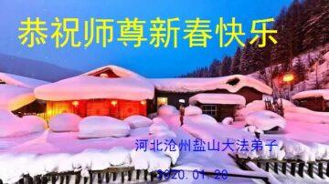河北省滄州市鹽山縣大法弟子恭祝師尊新春快樂!