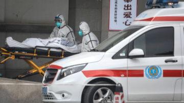 湖北省外首例 河北患者感染武汉肺炎死亡