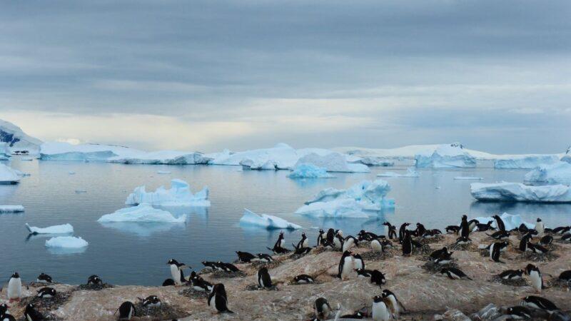 南極上空的詭秘:時光倒流30年