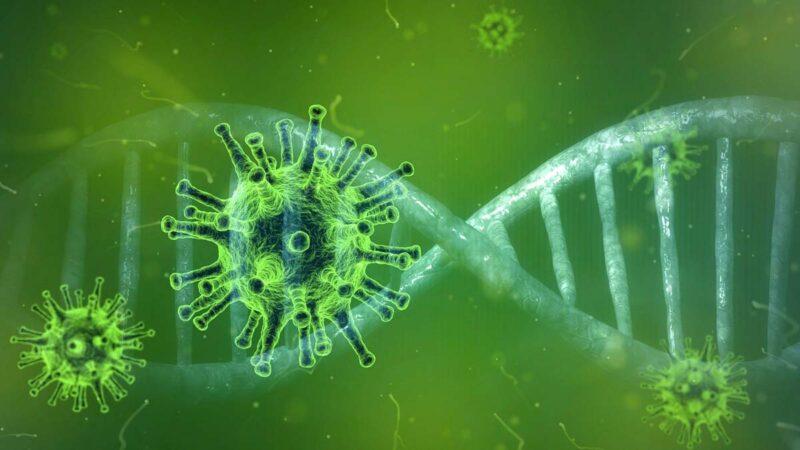瘟疫出現時機蹊蹺 新冠病毒源頭或不簡單