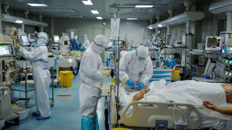 武汉肺炎患者全肺活检报告:肺呈古铜色出血坏死