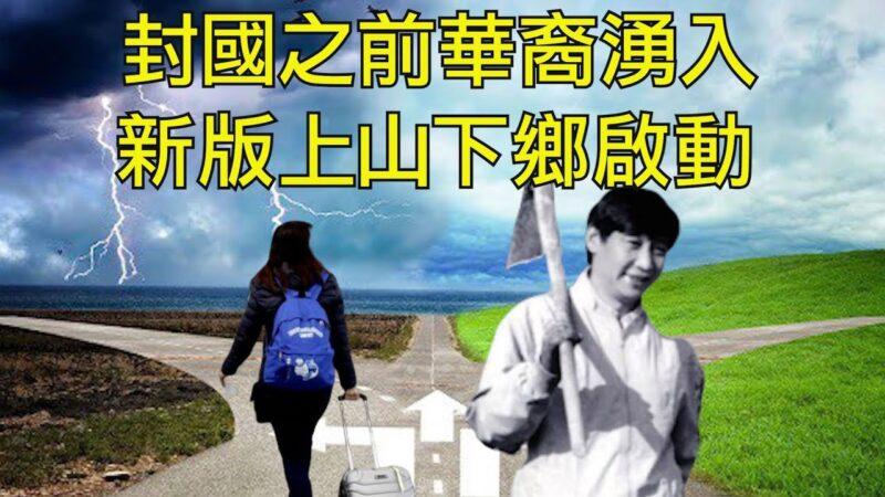 【江峰时刻】禁止外国人入境 赶回来的都是华裔 习近平再提劳动教育