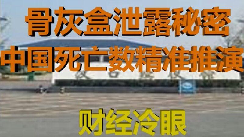 学者估算:武汉染疫死亡5.9万 全国9.7万