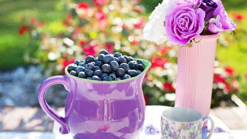 不老秘诀:最佳营养水果 很多明星都爱吃它(组图)