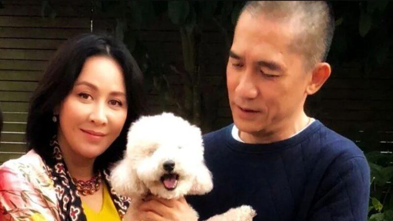 58歲梁朝偉玩滑板超強 劉嘉玲曝光影片送生日祝福