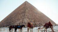 俄夫妇在自家后院盖9公尺高金字塔(视频)