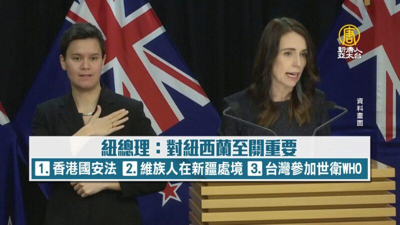 總理挺中國人權.台.港 紐媒:紐中非主僕關係