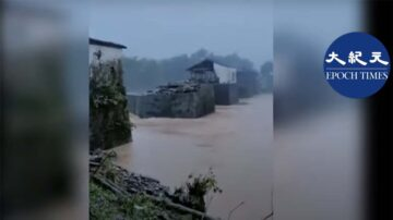 江西800年廊桥被洪水冲毁一半 官:只是皮外伤