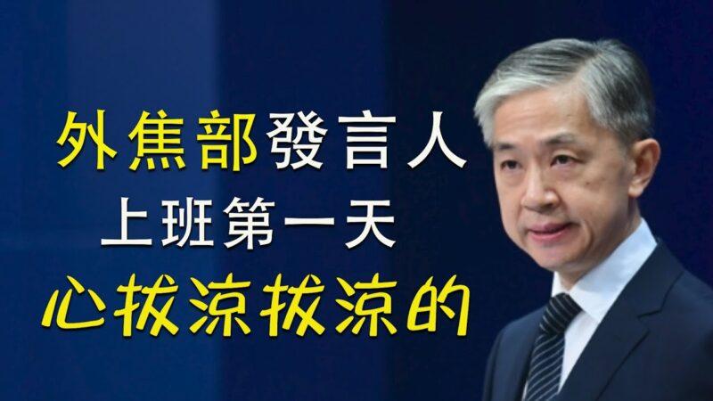 【江峰時刻】中共外交部新發言人汪文斌上班第一天
