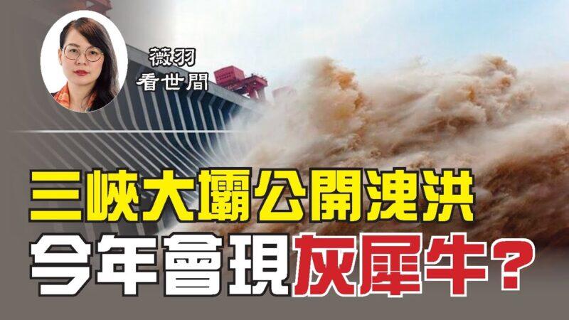 """【薇羽看世间】三峡大坝公开泄洪 今年会出现""""灰犀牛""""事件吗?"""