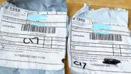 【禁闻】不明种子包裹事件 中共测试美国反应?