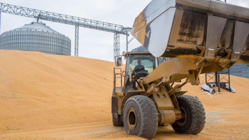 爆买缓解中美关系?中国开出史上最大农产品订单