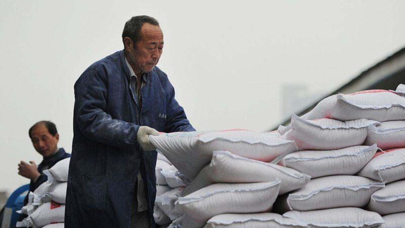 應對糧食危機第一刀?中糧集團總會計師駱家駹被查