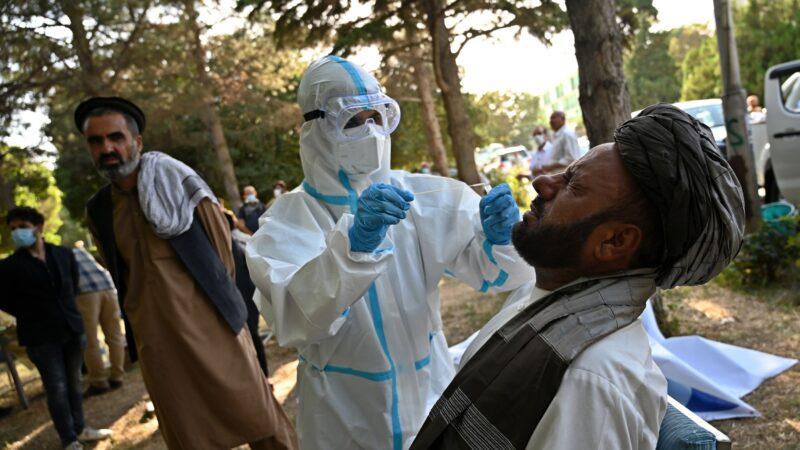 阿富汗政府:估计全国1000万人染疫