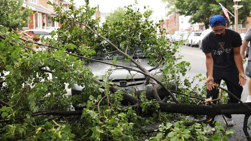 风暴重创纽约 三千树倒 皇后区两万居民仍断电