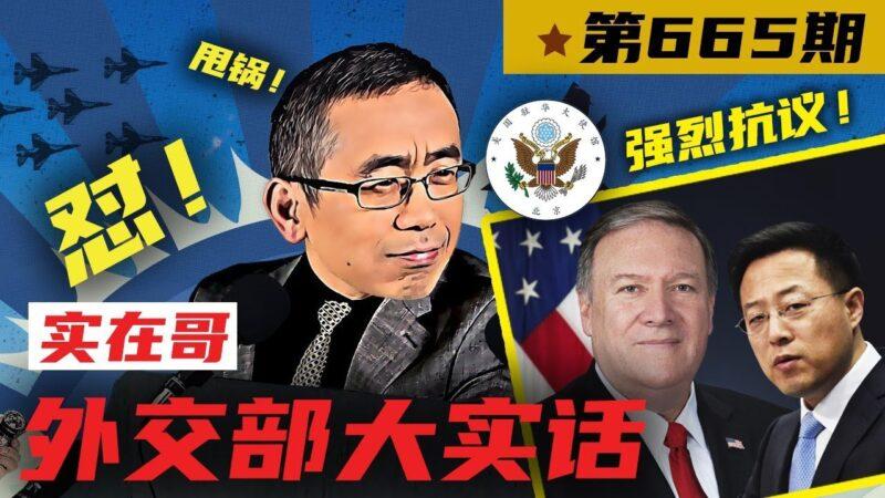 外交部大实话:胡锡进的中国梦超出人类智商