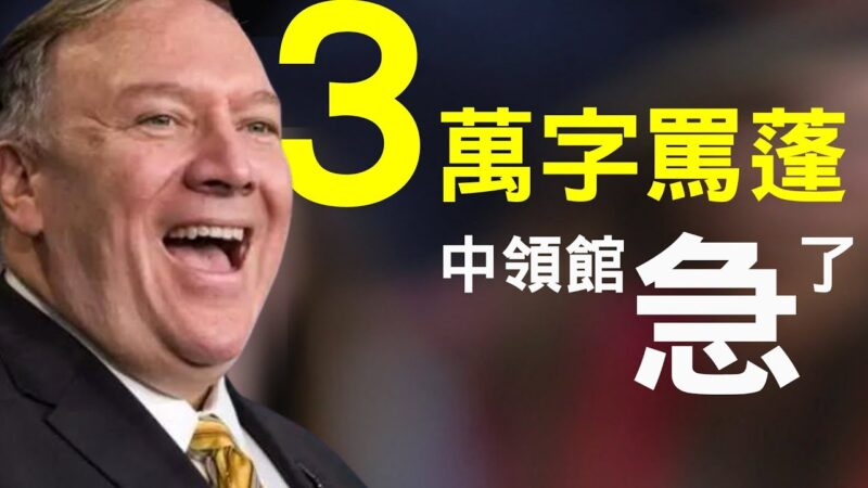 【老北京茶馆】英预言家2020下半年大预言