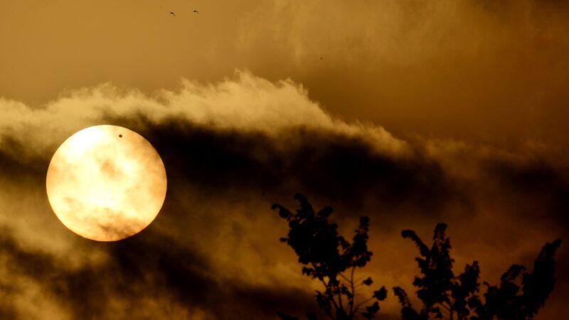 金星云层中或有生命 俄官员:它是俄罗斯的行星