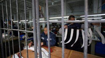 中共狱警收入何以高出普通公务员数倍