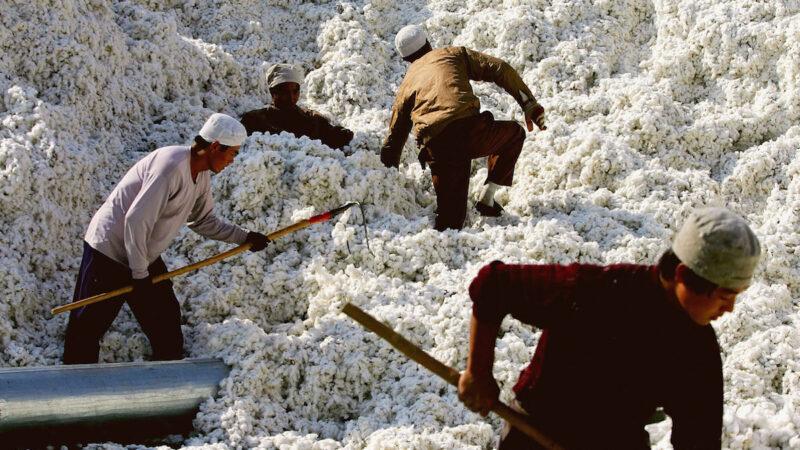 美國宣布禁止進口新疆棉花紡織品等一系列商品