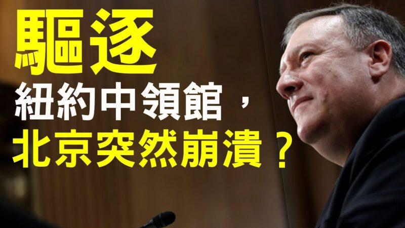 【老北京茶馆】清华公安部获潘金莲奖,中共突然宣布胜利!