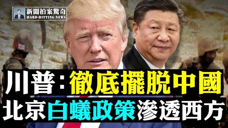 """【拍案惊奇】揭中共""""白蚁政策"""" 入秋冬再谈疫情"""