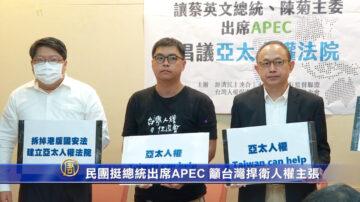 民团挺总统亲自出席APEC 表达台湾捍卫人权主张