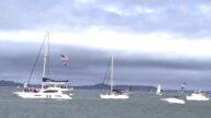 【选民心声】深蓝旧金山扬红帆 保守派船队游行挺川普