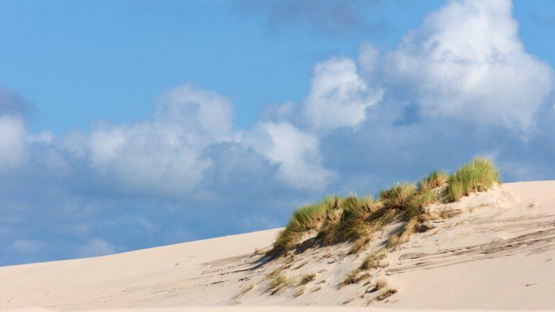 放大300倍  地球上和月球上的沙子內部有何不同?