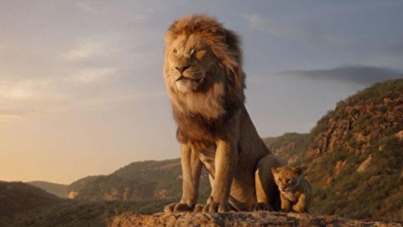 川普推「獅子戰鬣狗」 意味深長引熱議(視頻)