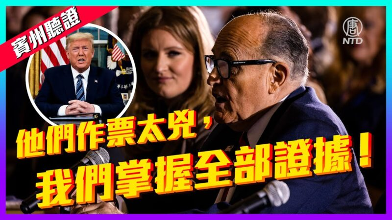 【老外看美国大选】川普:绝不认输 这是一场诈欺选举!