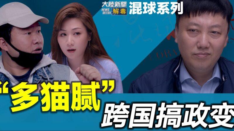 """【时事小品】""""混球人""""遥控乔拜登""""多猫腻""""跨国搞政变"""