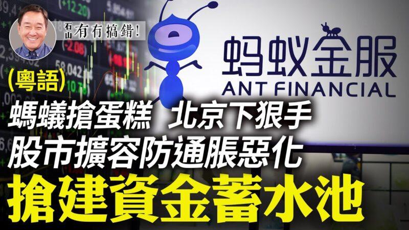 【有冇搞错】蚂蚁抢蛋糕 北京下狠手