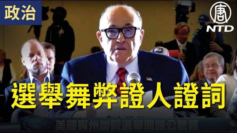 【宾州公听会】选举舞弊证人证词(中文同声翻译)